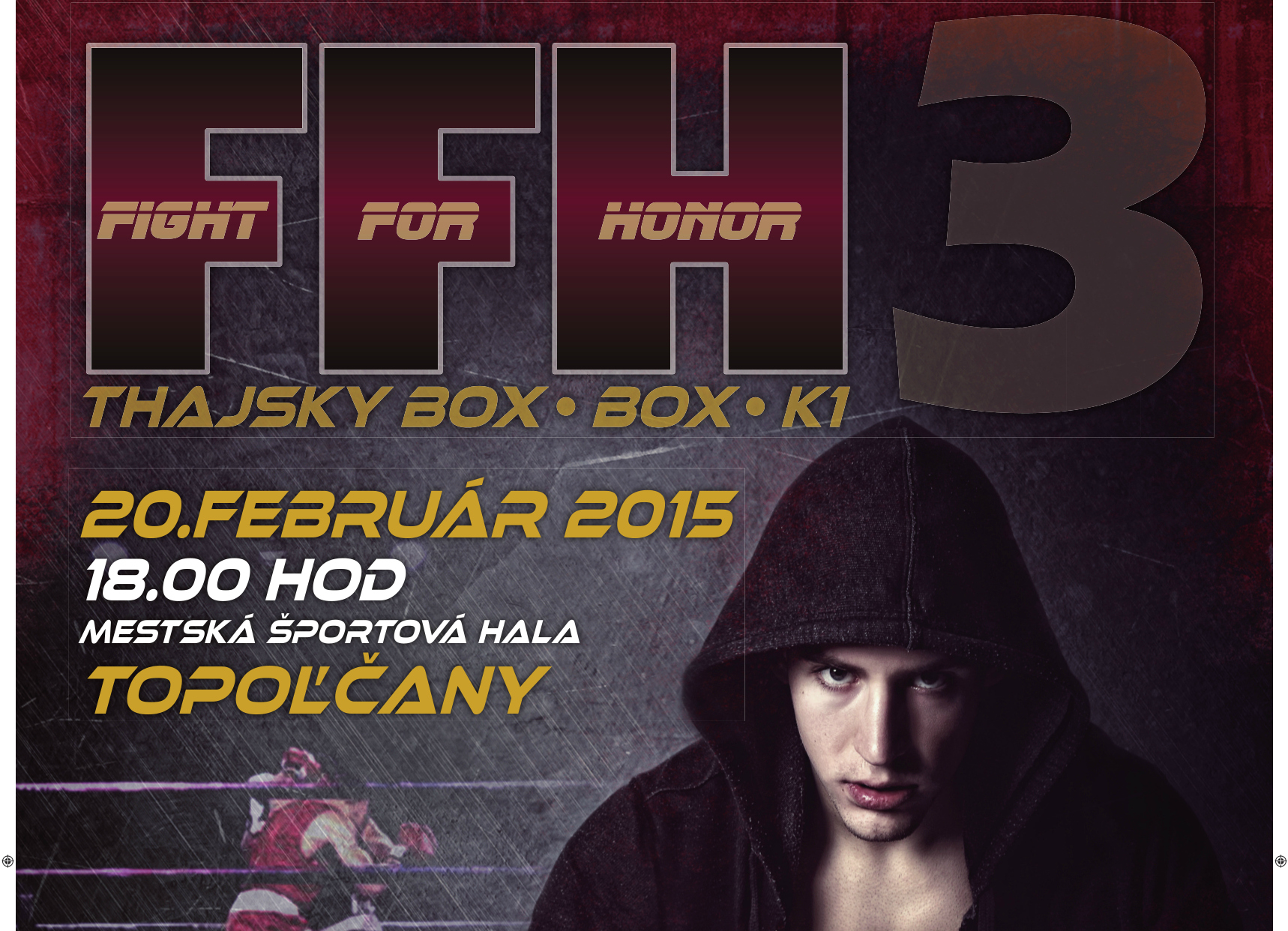 4f8084f0f1a2 FIGHT FOR HONOR 3 - Box